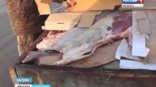 Мясо без документов(, 2016-02-19T09:30:35.000Z)