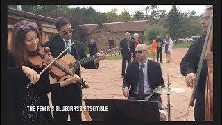 The Fever bluegrass ensemble