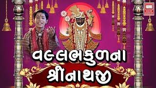 Vallabh Kudna Vhala Shreenathji