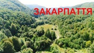 Україна вражає 2 | Подорож на Закарпаття