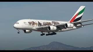 (HD) 3 Hours of Watching Airplanes | Los Angeles International Airport LAX Plane Spotting
