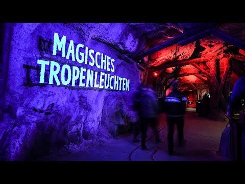 Magisches Tropenleuchten im Zoo Leipzig 2019
