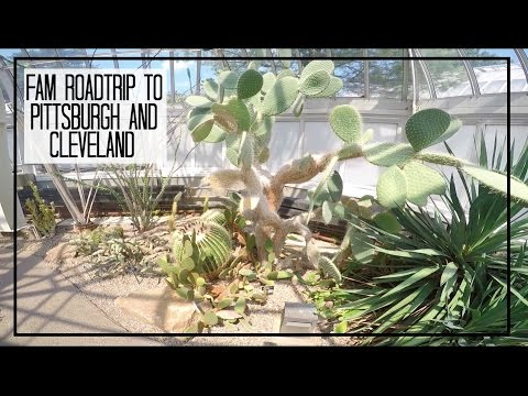 Travel Vlog | Roadtrip to Pittsburgh & Cleveland