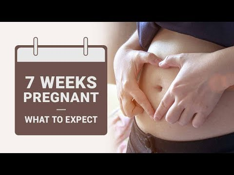 7 Week Pregnant What to Expect?