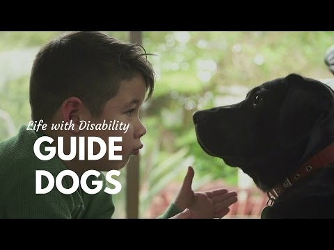Guide Dogs: A Natural Bond