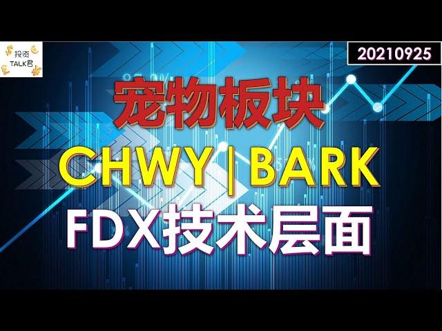 ✨宠物板块谁更强:CHWY VS BARK✨#美股分析