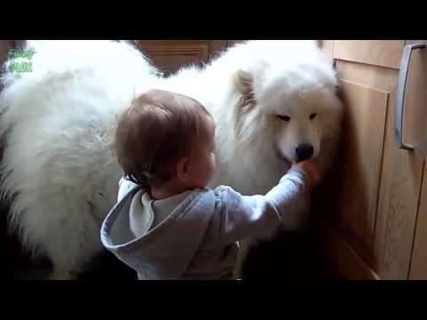 มาดูความน่ารักของสัตว์เลี้ยงที่รักเด็ก^^