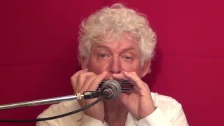 Tims Tiny Tunes #239 | Level 2, Harmonica play-along lessons | Jazz harmonica licks (lr)