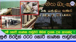 ඔබත් මේ රටට උන කෝටි ගණනක පාඩුවට හවුල් වී ඇති අයෙක්ද ? - Central Bank of Sri lanka