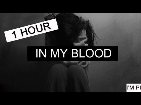 In My Blood - Shawn Mendes 1 Hora | 1 Hour Loop