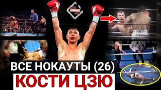 Is this the greatest Russian boxer ?! Kostya Tszyu - all knockouts of the legend (26) Eng subs