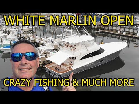 White Marlin Open Week Ocean City Maryland Fishing And Partying!