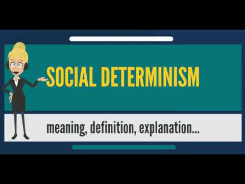 What is SOCIAL DETERMINISM? What does SOCIAL DETERMINISM mean? SOCIAL DETERMINISM meaning