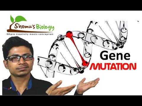 Genetic mutation | gene mutation