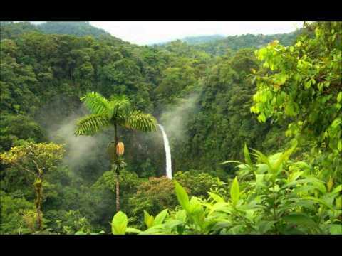 DJ Twist - Early Morning Jungle - 1994 [Oldskool Jungle]
