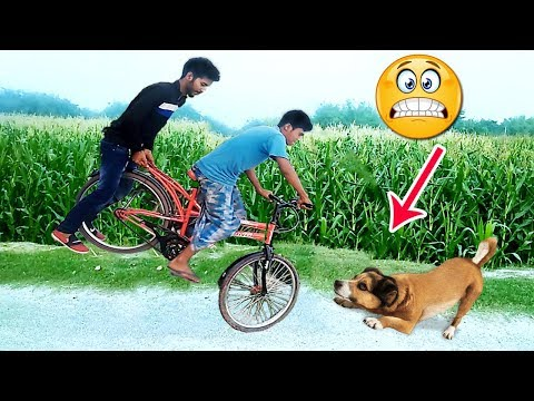 Must Watch New Funny Comedy Videos 2019 😂 😂 - Episode 34, Best Comedy Video,  Bindas Boys