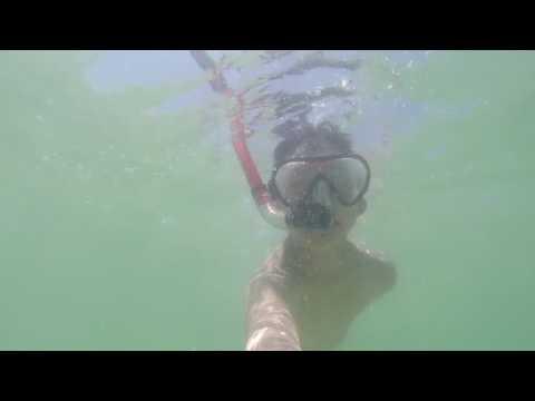 Snorkeling In Clearwater Beach Florida 2016 Gopro Hero