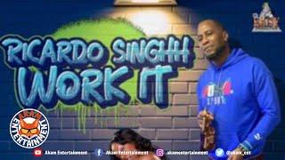 Ricardo Singhh - Work It [Audio Visualizer]