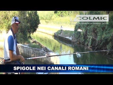 SPIGOLE NEI CANALI ROMANI