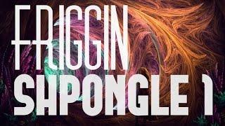 The Friggin Best of Shpongle 1