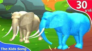 เพลงช้าง ช้าง ช้าง น้องเคยเห็นช้างหรือเปล่า รวมเพลงเด็กอนุบาล 30 นาที - The Kids Song