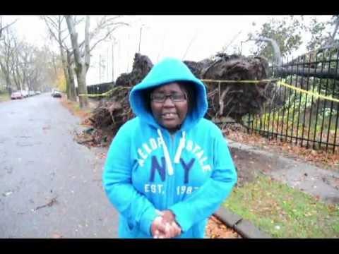 Hurricane Sandy tear down a big tree & dump it on Trenton Central High School fence..