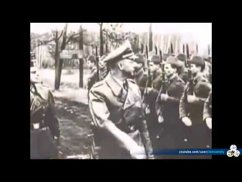 Nazi   Palestine Connection, historical alliance, Palestinian leaders backed and helped Hitler WW II
