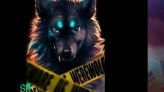Anime Wolves - Die Erinnerung