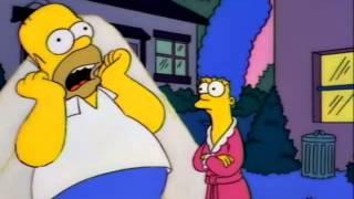 Homer Simpson's bee rant