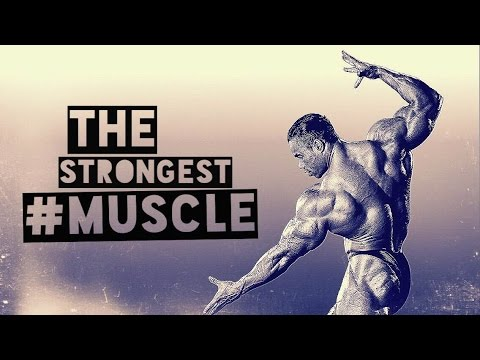 BODYBUILDING MOTIVATION - THE MIND IS YOUR STRONGEST MUSCLE