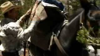 Eastern Sierra Horseback Riding | Mono County, CA