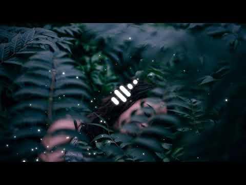 DVBBS & NERVO - Make It Last [Bass Boosted]