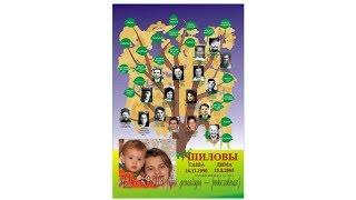 Как сделать дерево рода. Как составить родословную. Генеалогическое дерево