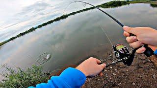 МОЩНАЯ ОЗЁРНАЯ ЩУКА Рыбалка на спиннинг