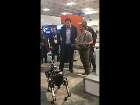 Boston Dynamics robot SpotMini with Sprint CEO at MWC Americas