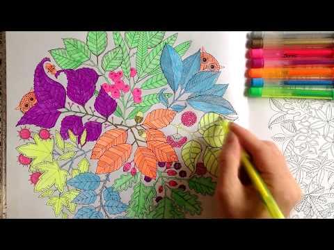 Таинственный сад#1 Книга для творчества и вдохновения Раскраски/The mysterious garden