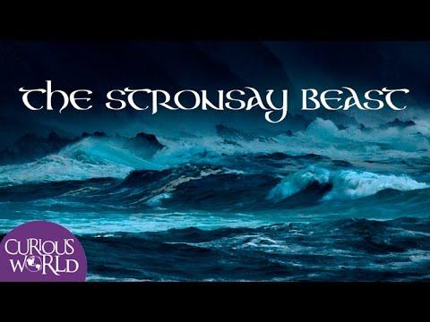 The Stronsay Beast