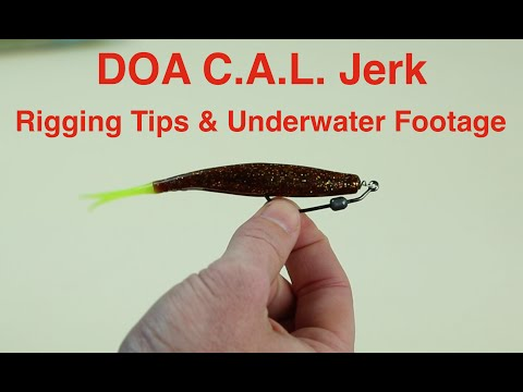How to Rig a DOA Jerk Bait for Saltwater Fishing – Underwater Footage Included