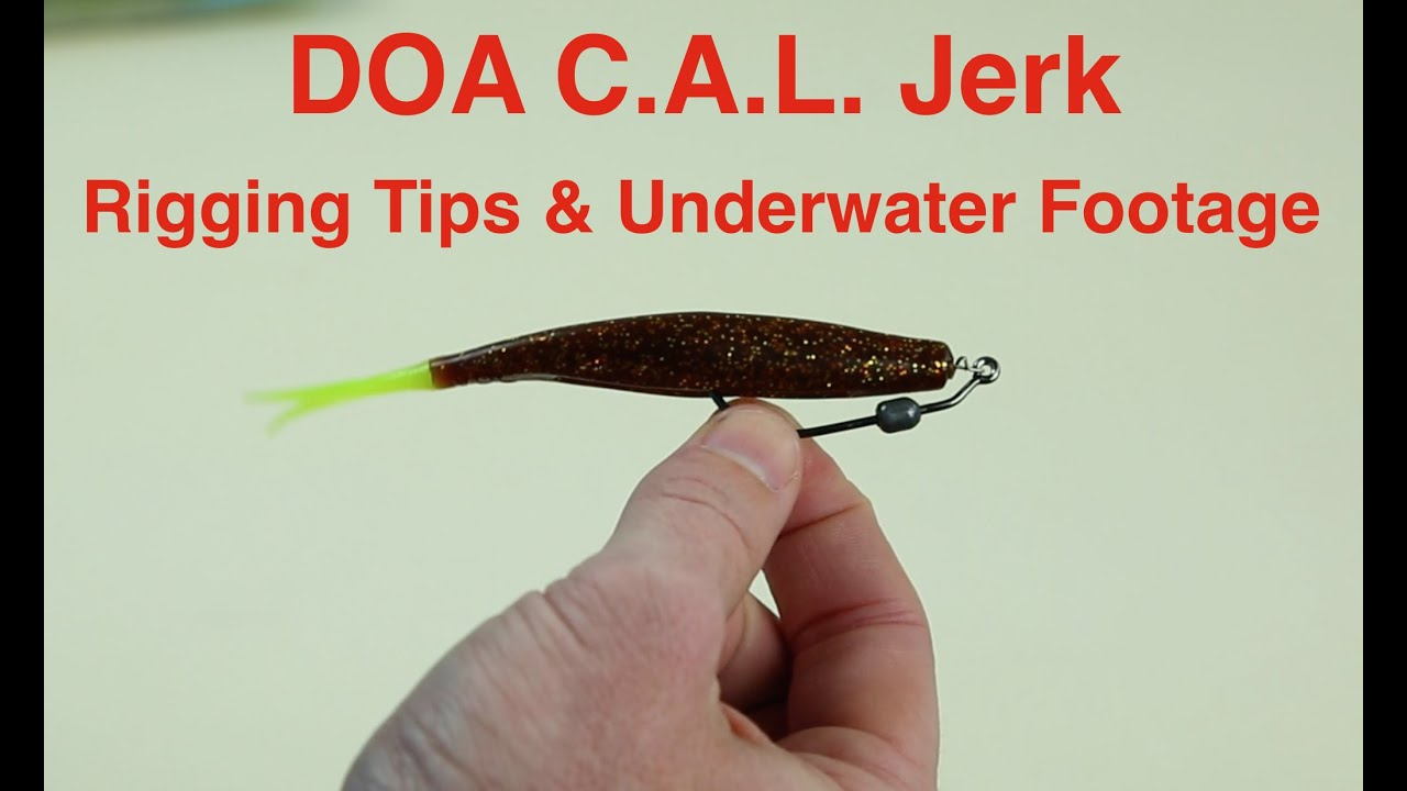 How to Rig a DOA Jerk Bait for Saltwater Fishing - Underwater Footage  Included