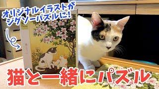 猫と一緒にジグソーパズルで遊んでみたら意外な結末に…!?