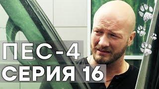 Сериал ПЕС - 4 сезон - 16 серия - ВСЕ СЕРИИ смотреть онлайн | СЕРИАЛЫ ICTV