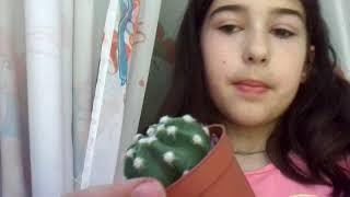 Как ухаживать за кактусом? Мой кактус! Lena Di