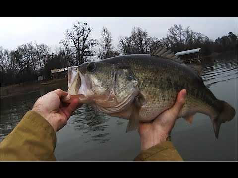 Jerk Bait Largemouth Bass Fishing Lake Bob Sandlin