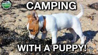 3 Day Camping Trip with my new Puppy! | TAOutdoors