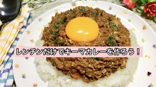 Keema Curry   Awesome Style's Recipe Transcription
