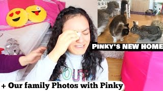 Giving Pinky Our Bunny Away And Moving To The Philippines