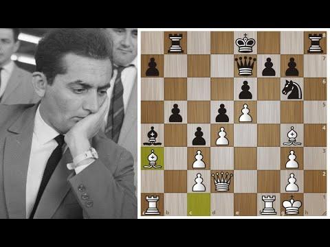 Шахматный метеор - Леонид Штейн! Разгром Тиграна Петросяна во Французской! Шахматы.