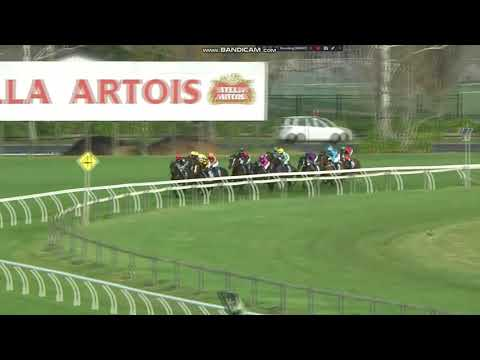 2021 Gold Trail Stakes