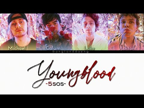 5SOS - Youngblood // color coded lyrics