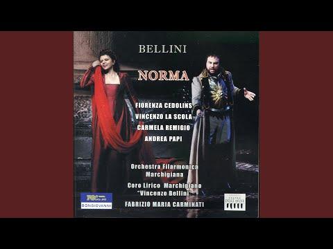 Norma: Act I Scene 1: Norma viene (Chorus)